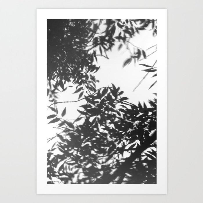 Reflejo Art Print