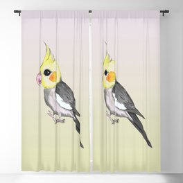 Very cute cockatiel Blackout Curtain