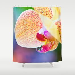 Orchid and Raindrops Shower Curtain