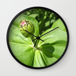 A Beautifull Bud Wall Clock