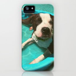 SERENA (shelter pup) iPhone Case