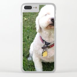 Sniffer Clear iPhone Case