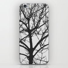 Undetermined  iPhone & iPod Skin