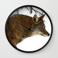 coyote Wall Clocks featuring Coyote by tracy-Me