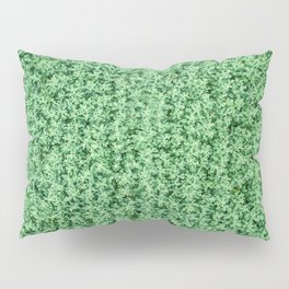 Nature print, Green rapeseed agriculture field Top View. Rapeseed. Pillow Sham