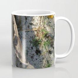 Ambiance Macré 2 . Le lion des sables se réveille doucement Coffee Mug