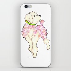 Pastel Pink Hydrangea Poodle with Bright Green Collar iPhone & iPod Skin