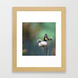 Butterfly Thistle Framed Art Print