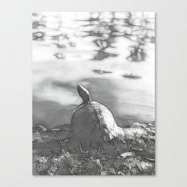 Terrapin Noir Canvas Print