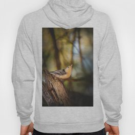 Northern Nuthatch Hoody