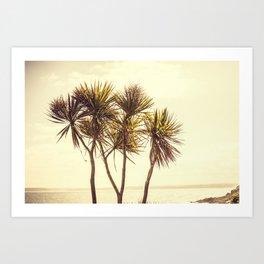 St. Ives Palms, Cornwall Art Print