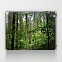 The Forrest Laptop & iPad Skin