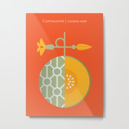 Fruit: Cantaloupe Metal Print