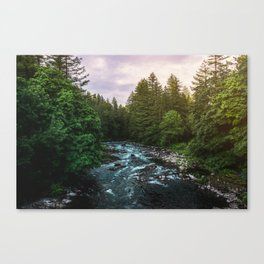 PNW River Run II - Pacific Northwest Nature Photography Canvas Print