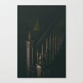 Shadowed Canvas Print