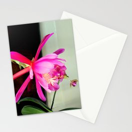 Love At First Bite Stationery Cards