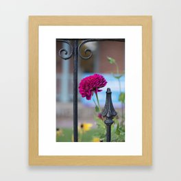 Caged Beauty Framed Art Print