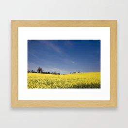 Brest Fields Framed Art Print