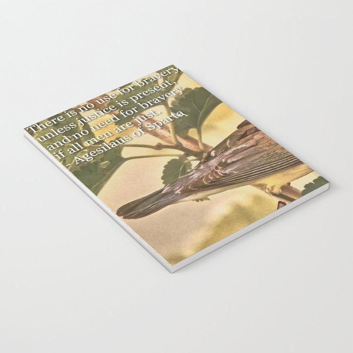 Birds In Armor Notebook