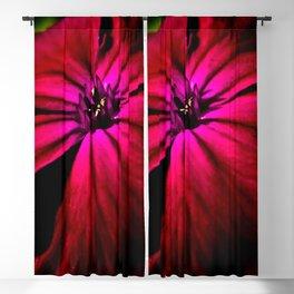 Purple Wild Flower Blackout Curtain