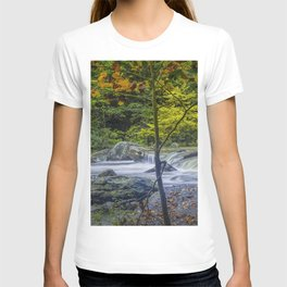 Rocky Broad River in October T-shirt