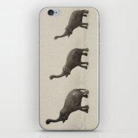 elephants iPhone & iPod Skins featuring elephants by zantelier
