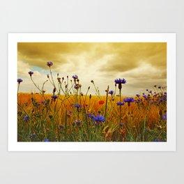 Summefield Impressions Art Print