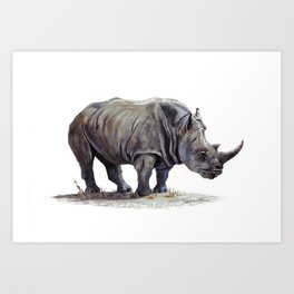 Rhinoceros painting Art Print
