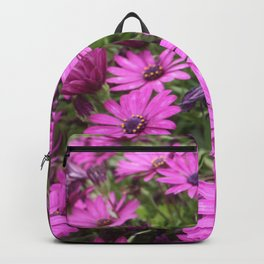 Daisies Spring In All Its Splendor Backpack