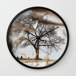 Framed by Reeds Wall Clock