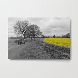 Rapeseed Field 01 (Cheshire) Metal Print