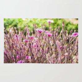 fleurs des champs 5 Rug
