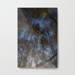 Treemirror Metal Print