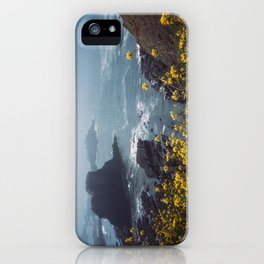 Yaquina Head iPhone Case