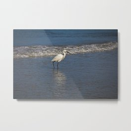 Strolling Casually Metal Print