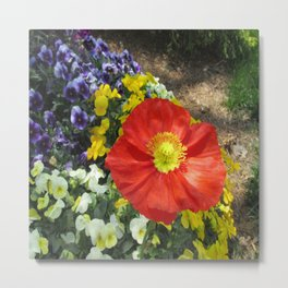 Garden Palette Metal Print