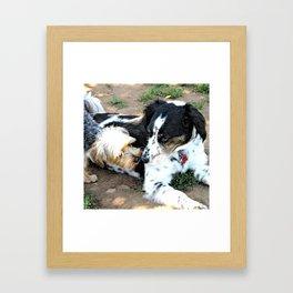 Louis and Skeeter Dogs Framed Art Print