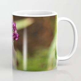 Beautiful Onion Blossom Coffee Mug