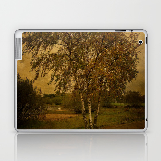 A Single Birch Tree Laptop & iPad Skin by rawshutterbug