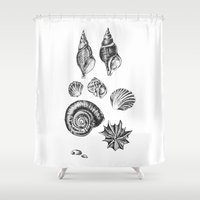 shells Shower Curtains featuring shells by JadeApple
