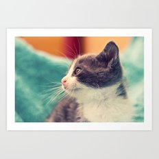 Billy The Cat Art Print