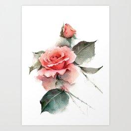 Watercolor Pink Rose Art Print