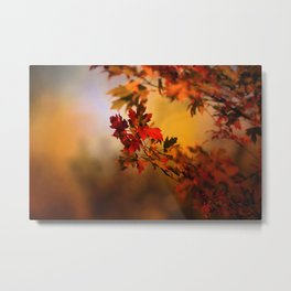 Times They Are Changing Metal Print