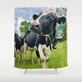 Cow 2089 Shower Curtain
