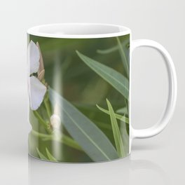 white oleander in the garden Coffee Mug