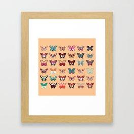 Butterflies collection 02 Framed Art Print