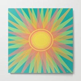 Winter Sun Metal Print