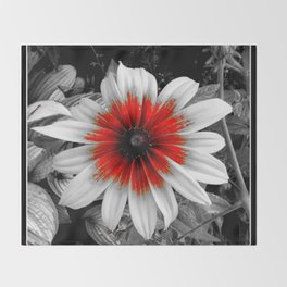 Flower | Flowers | Red Stroke Gaillardia | Red and White Flower | Nadia Bonello Throw Blanket