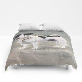 Mikko, Jack Russell Terrier Comforters