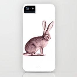 Arizona Jack Rabbit iPhone Case